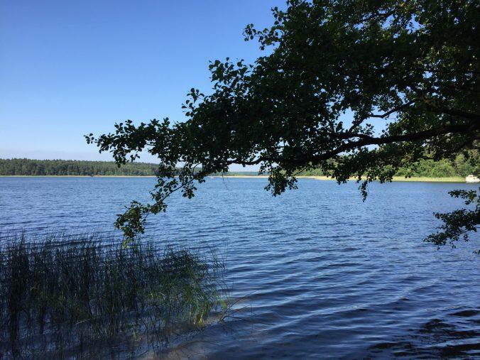 Mecklenburgische Seenplatte Anfang Juni 2016
