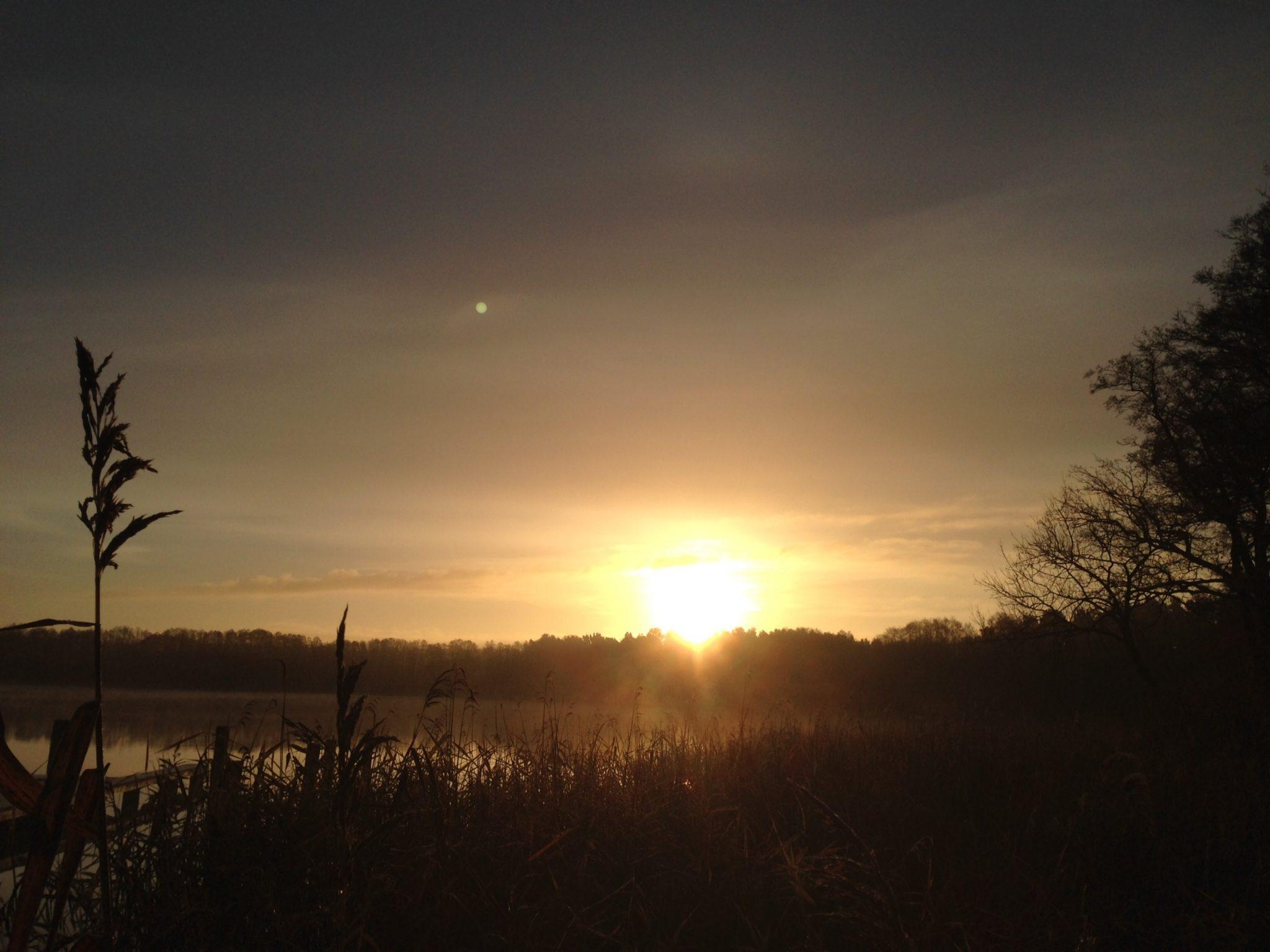 Sonnenaufgang am Pälitzsee im November
